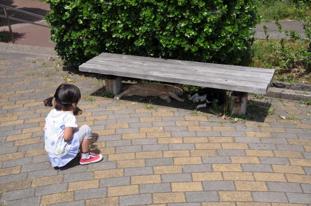 城ヶ島公園9