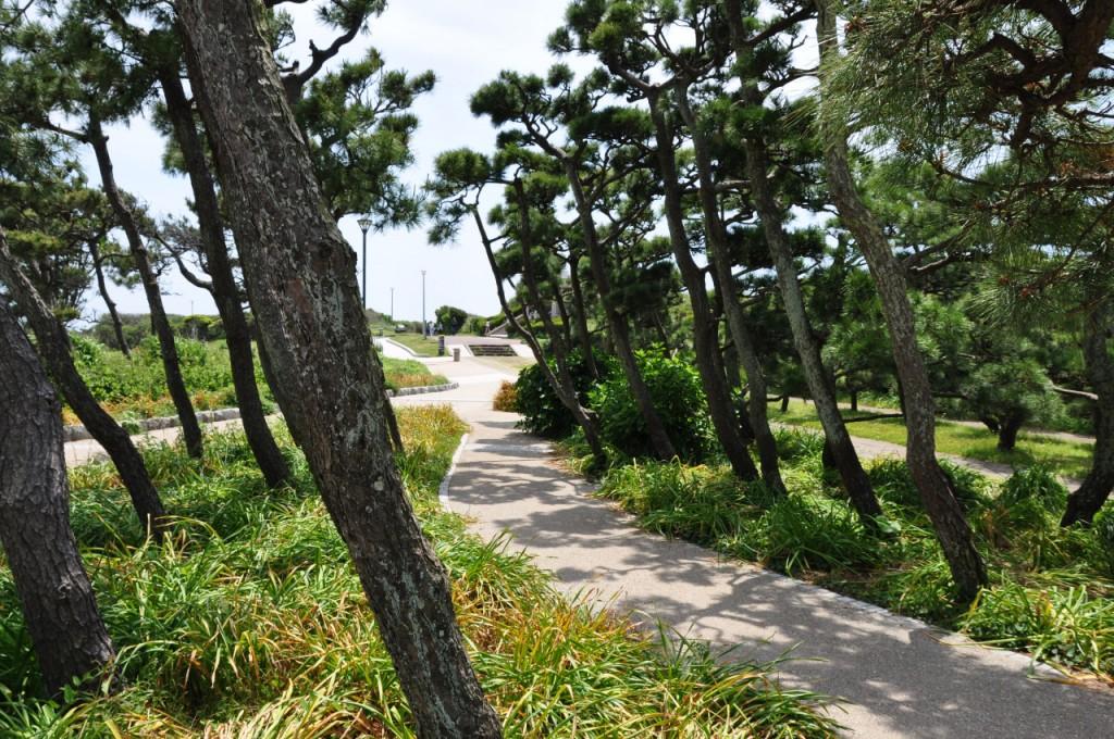 城ヶ島公園3