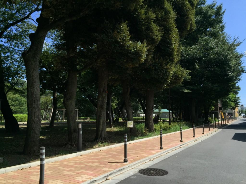 文庫の森公園4