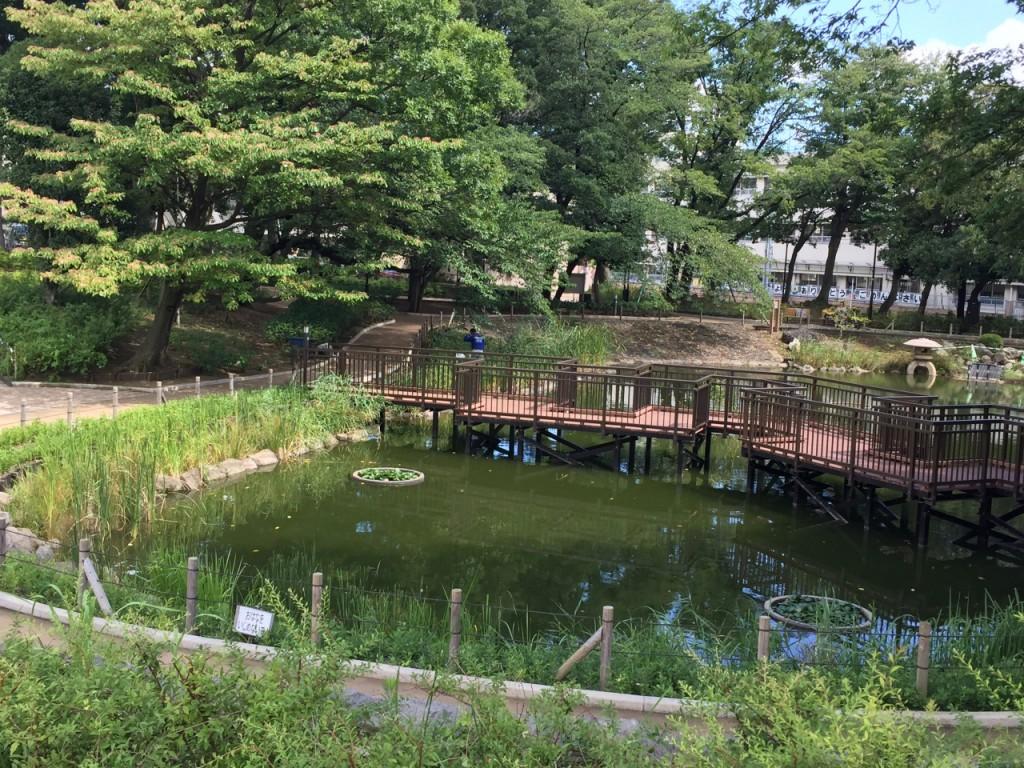 文庫の森公園8