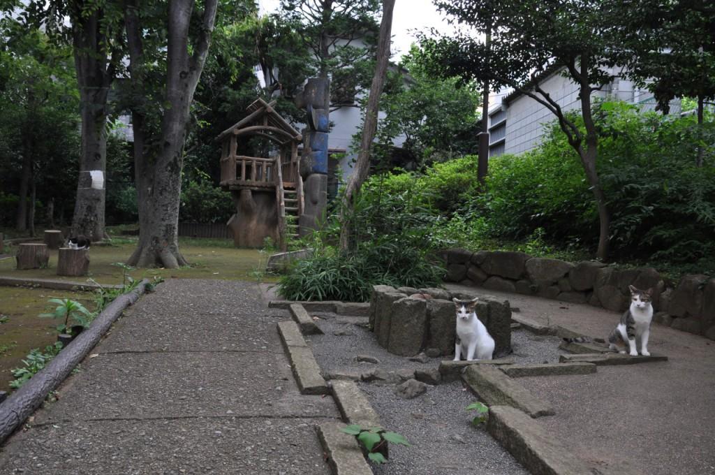 葛ヶ谷公園2