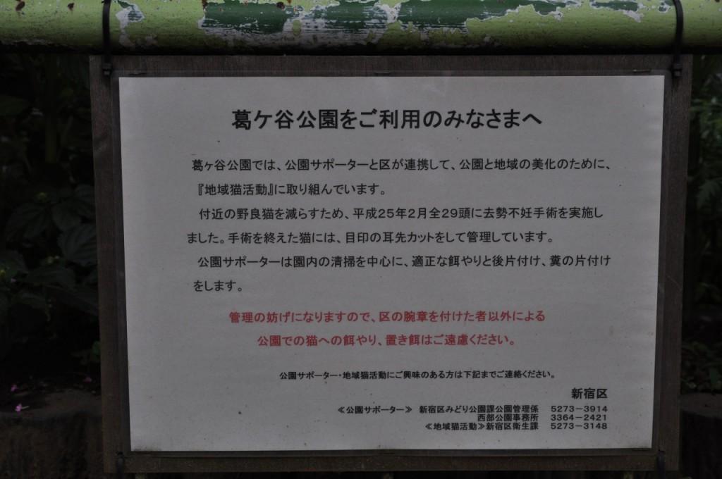 葛ヶ谷公園9