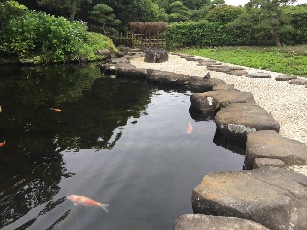 幕張海浜公園5