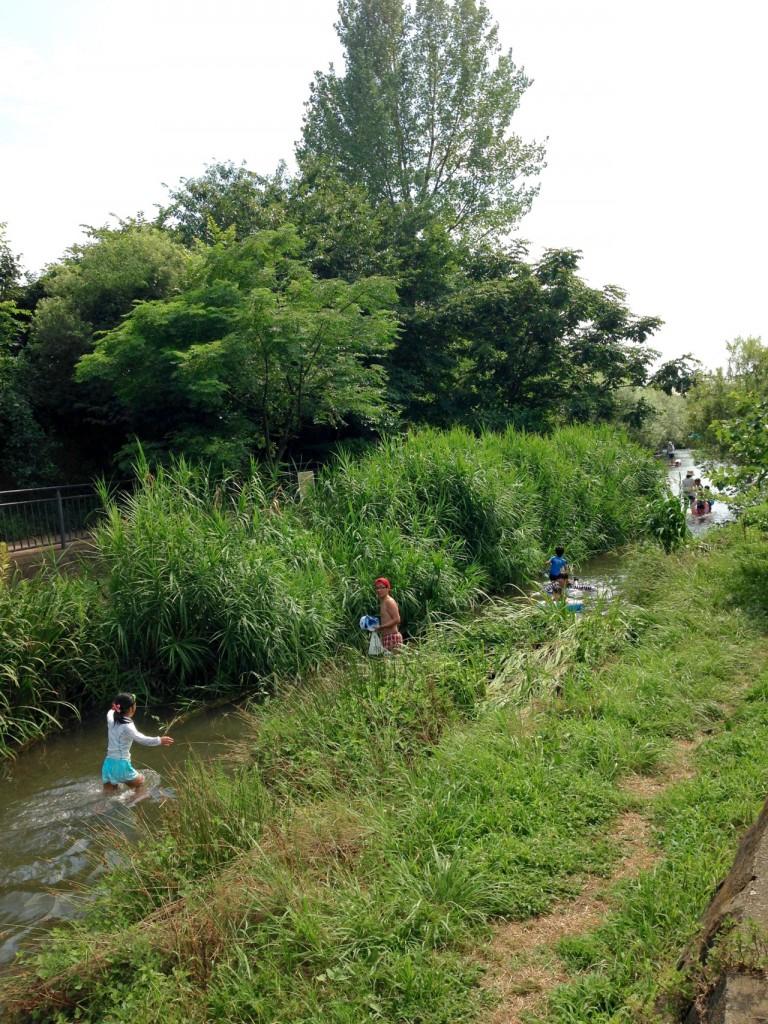 落合川いこいの水辺