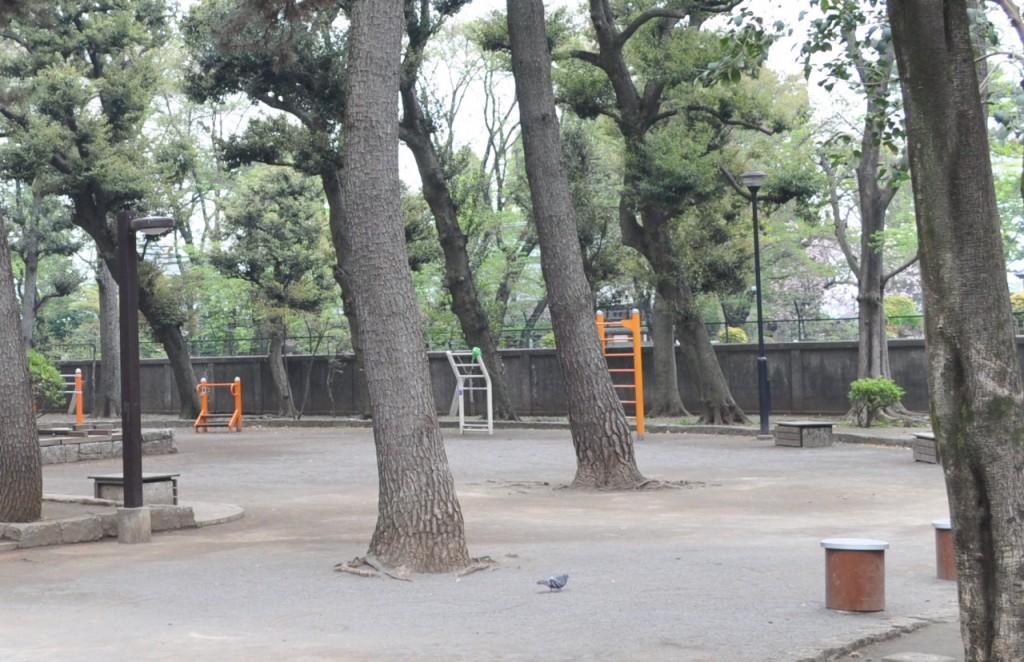 若林公園3