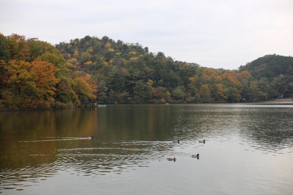 宝が池公園3