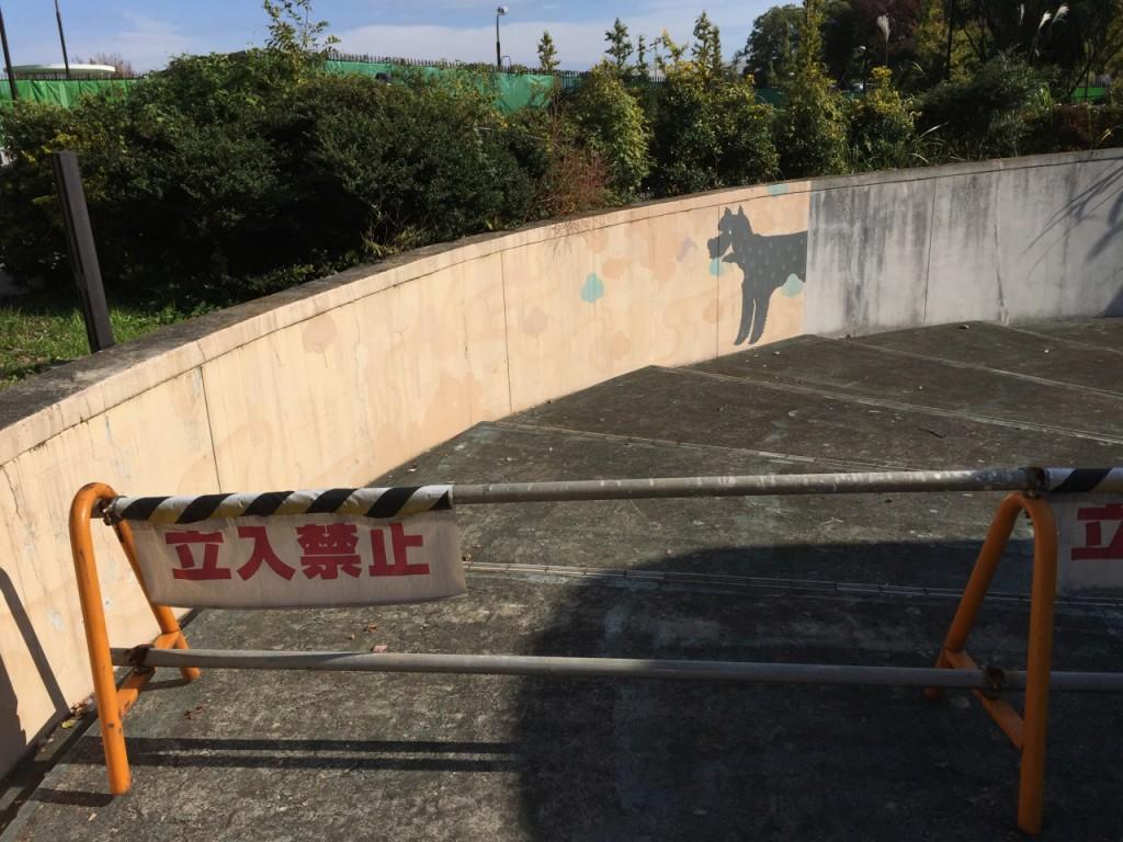 駒沢オリンピック公園5