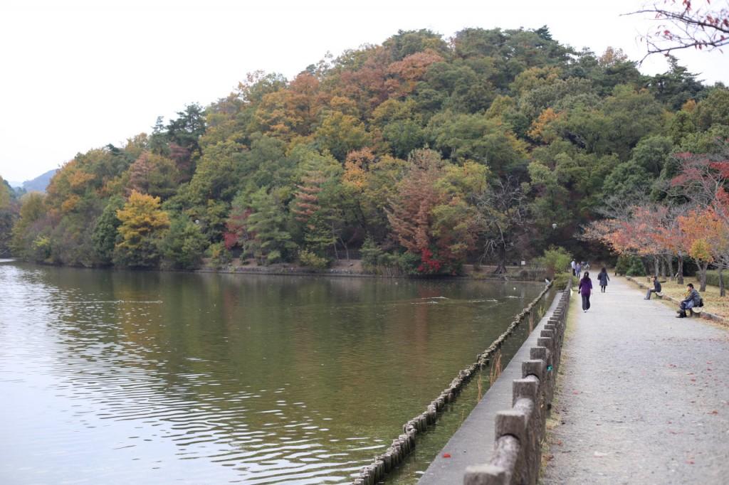 宝が池公園4