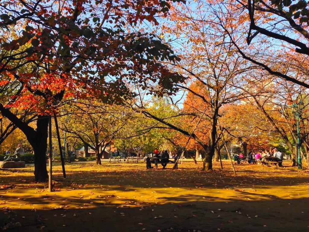 浜町公園の冬景色。