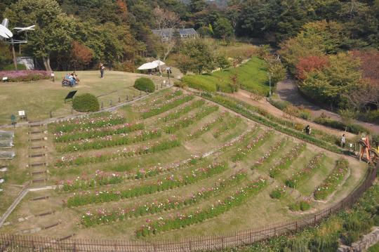 神戸布引ハーブ園4
