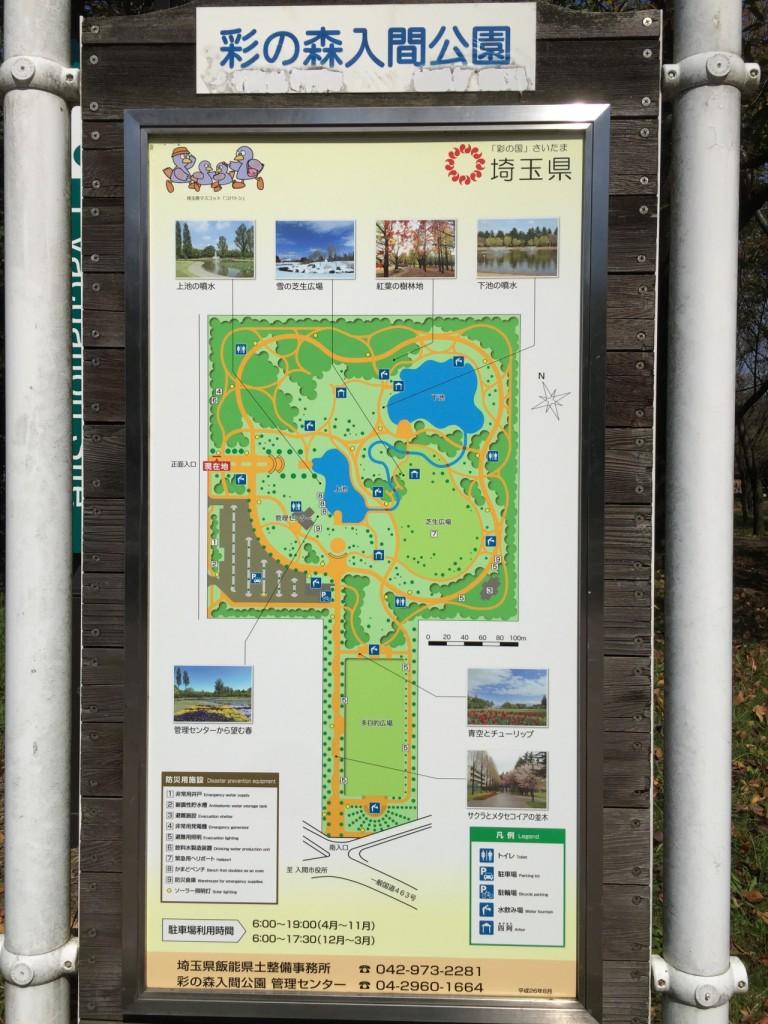 彩の森入間公園4