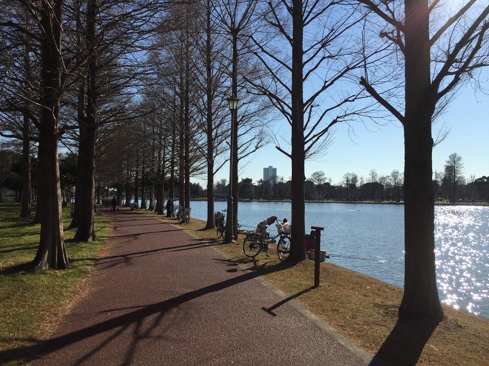 みさと公園11