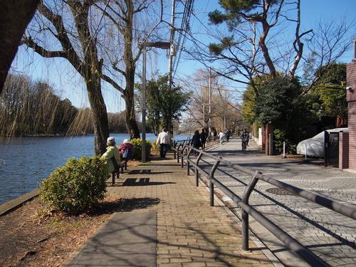 石神井公園