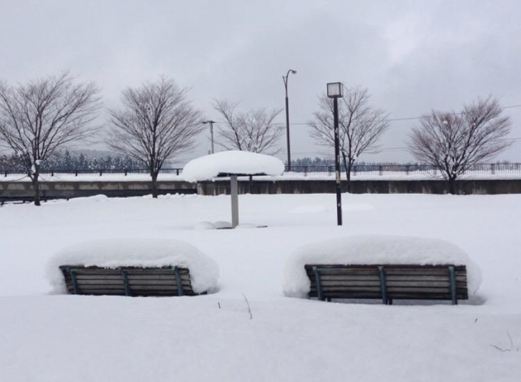 青森の公園6