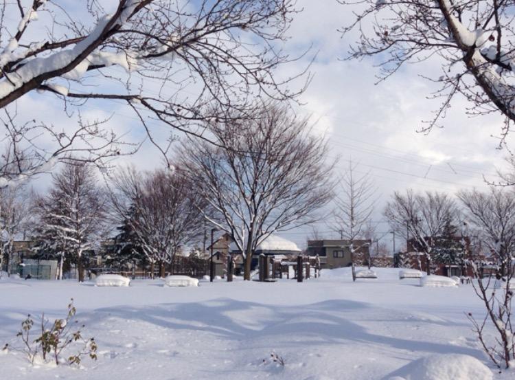 青森の公園8