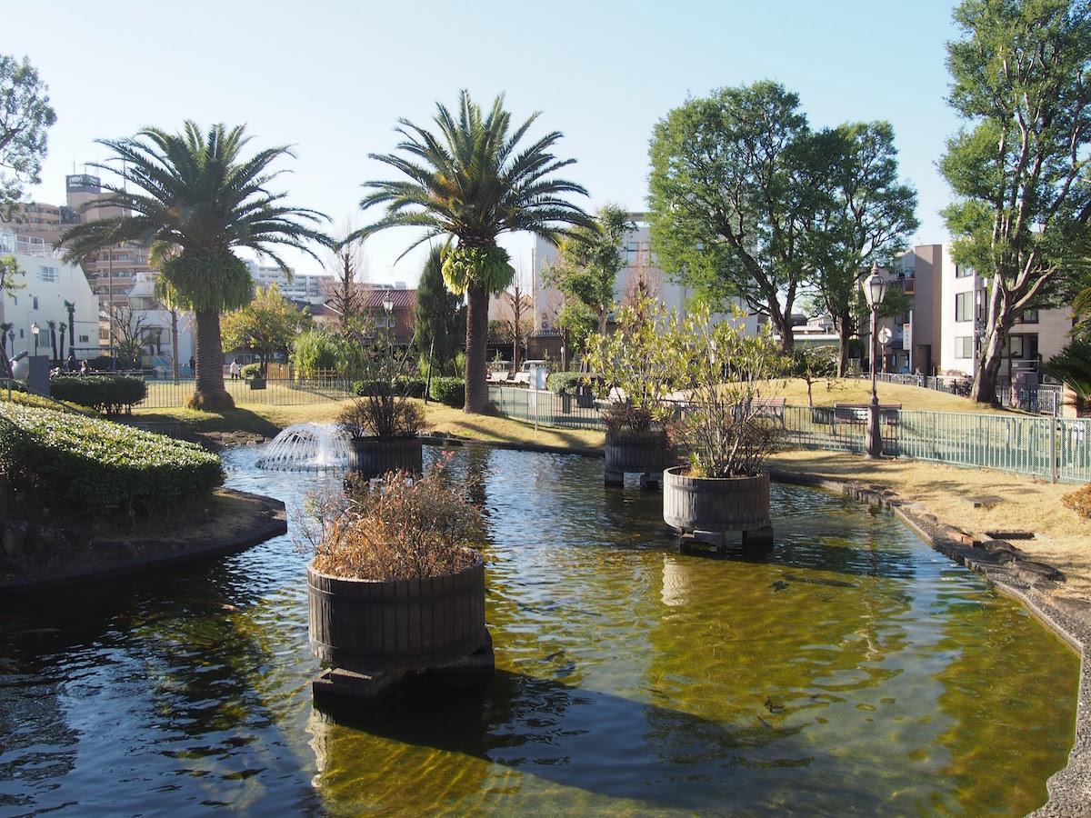 池の周りにも様々な樹木