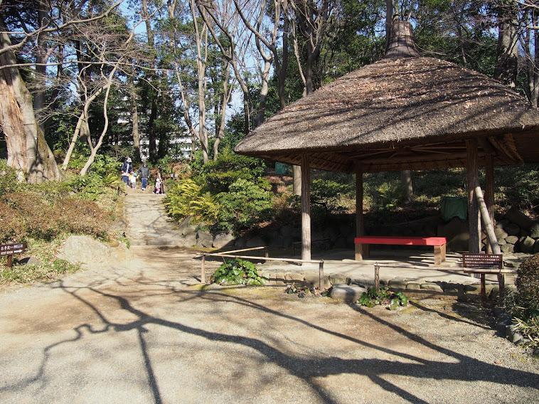 小石川後楽園9