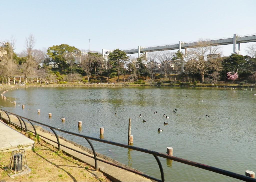 千葉公園2