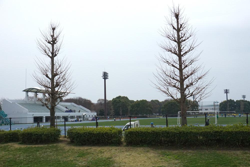 海老名運動公園6