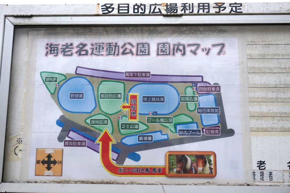 海老名運動公園7