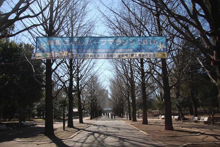 光が丘公園2