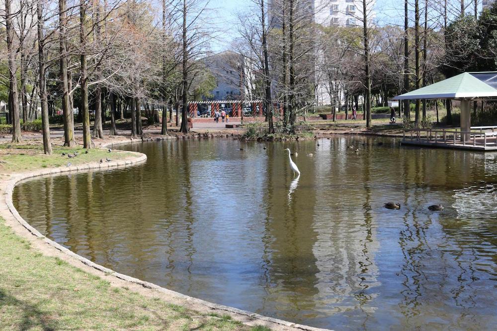 神宮東公園12