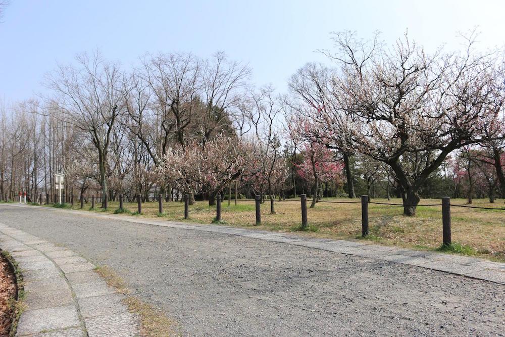 笠寺公園4