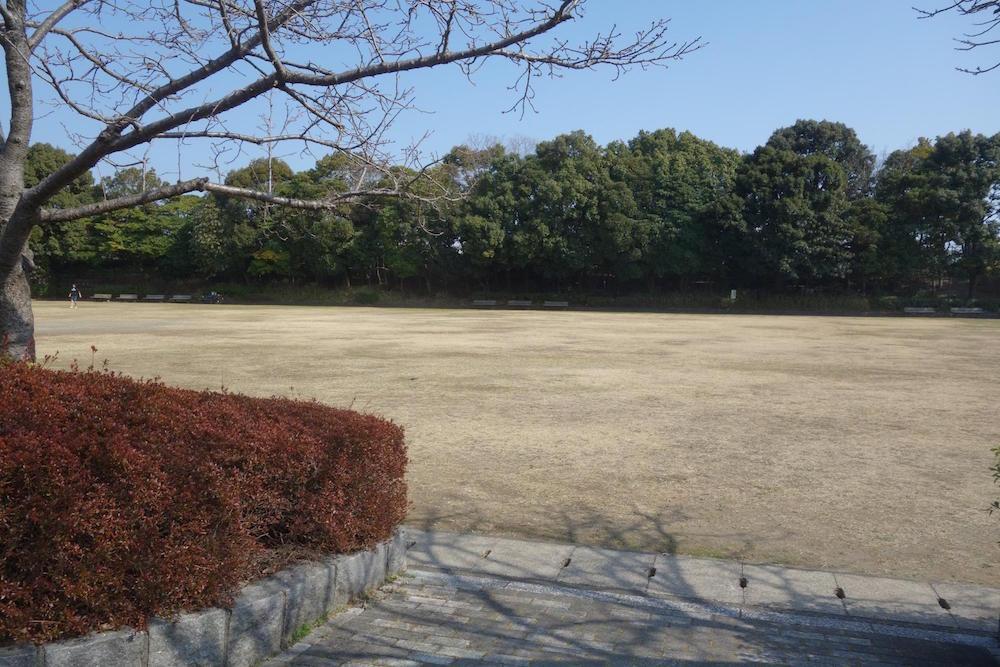 清水清美潟公園3