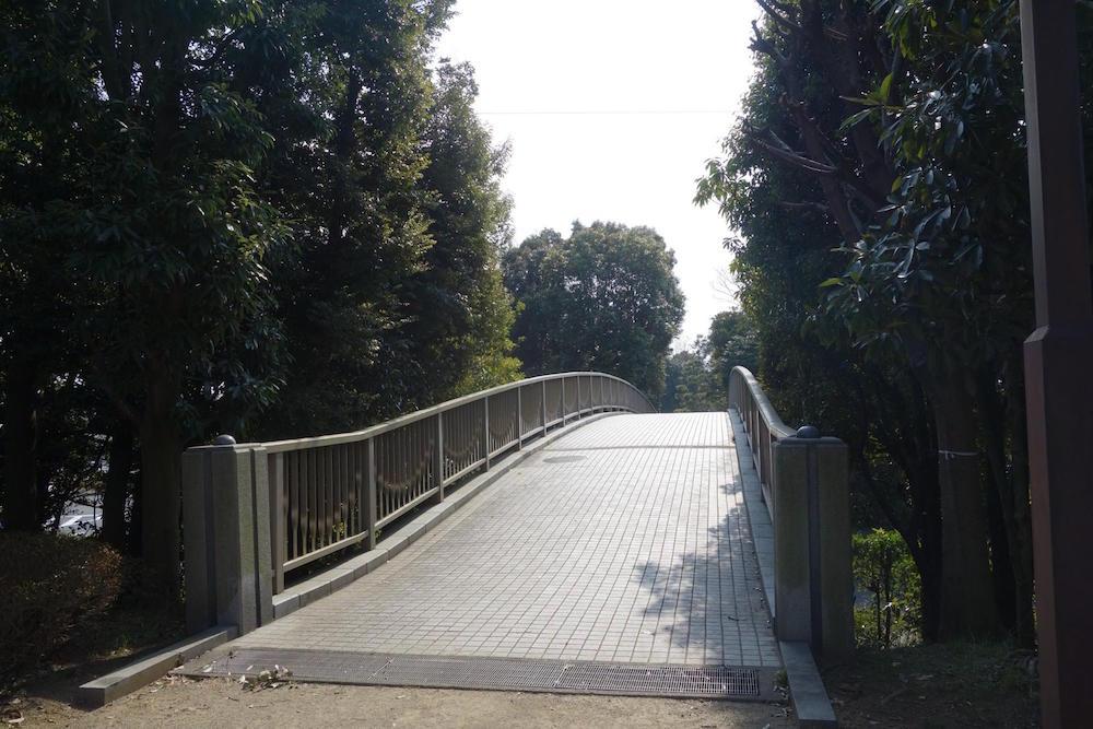 清水清美潟公園7