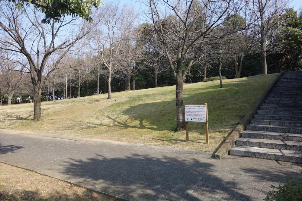清水清美潟公園8