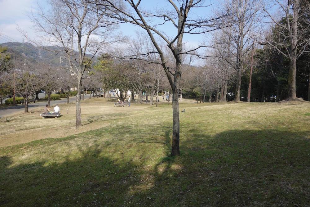 清水清美潟公園9