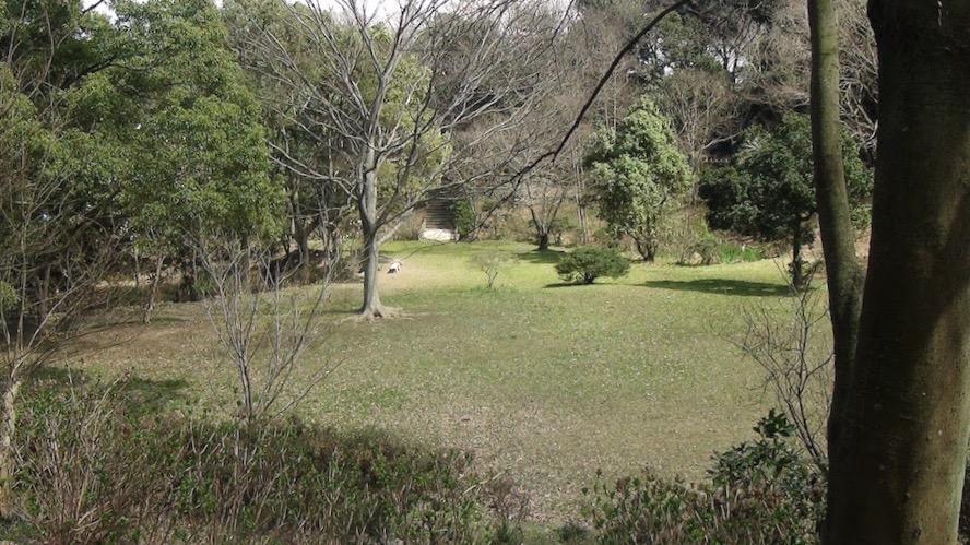 太田山公園10