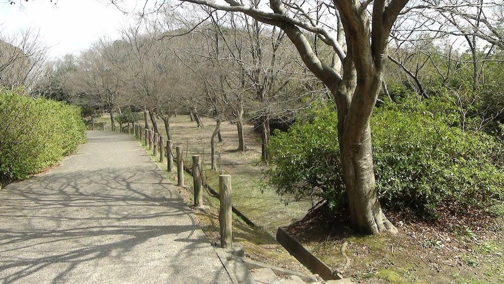 太田山公園11