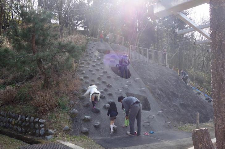 蓮華寺池公園12