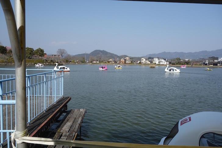 蓮華寺池公園2