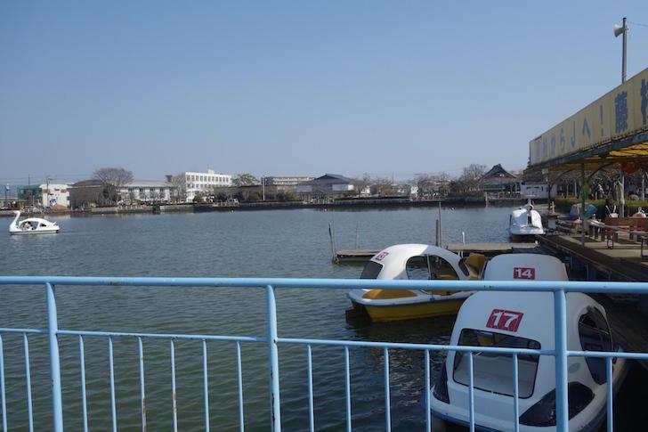蓮華寺池公園3