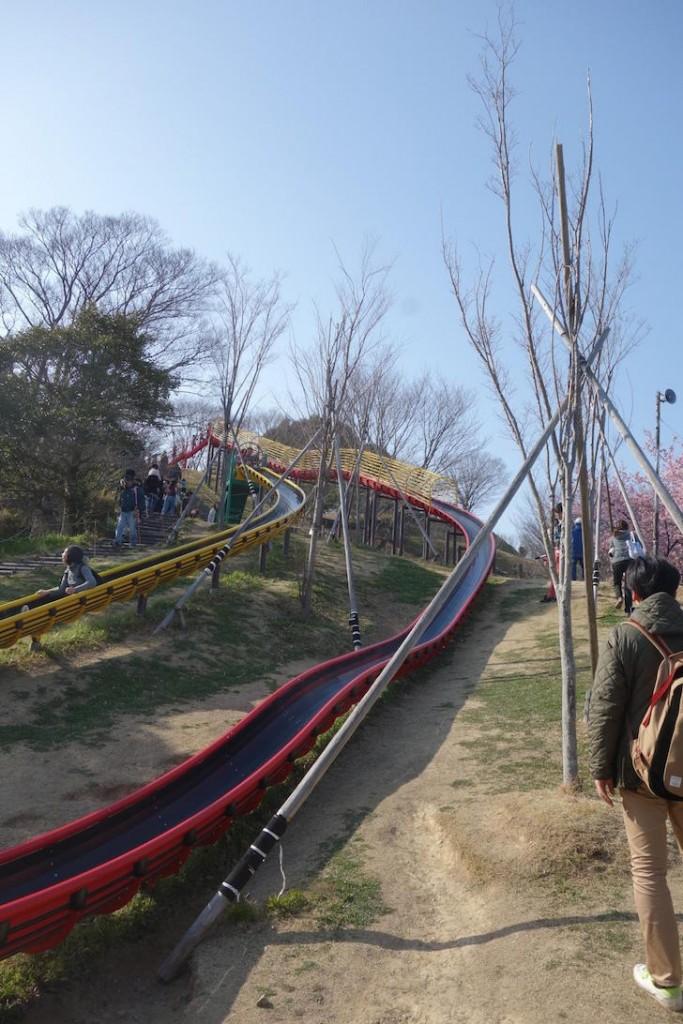 蓮華寺池公園4