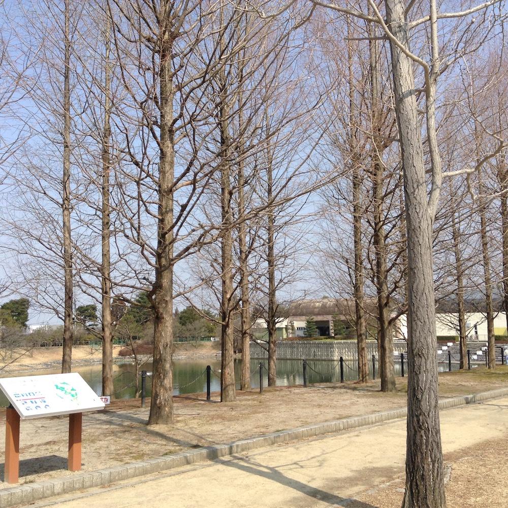 ロクハ公園1