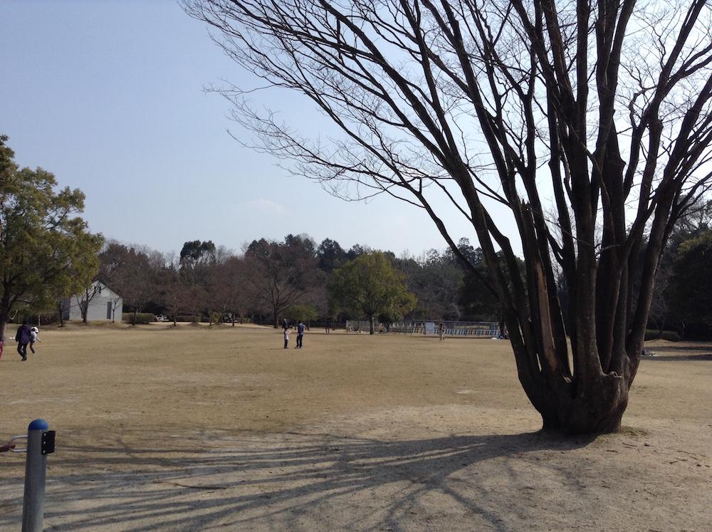 ロクハ公園6
