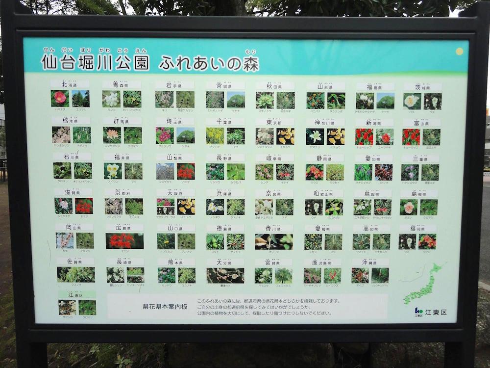 仙台堀川公園10