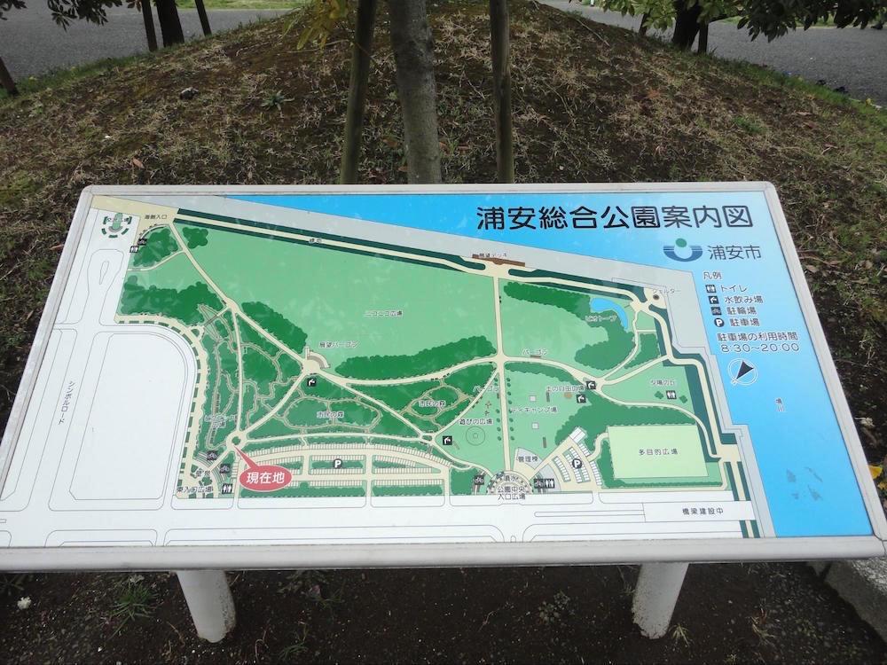 浦安市総合公園3