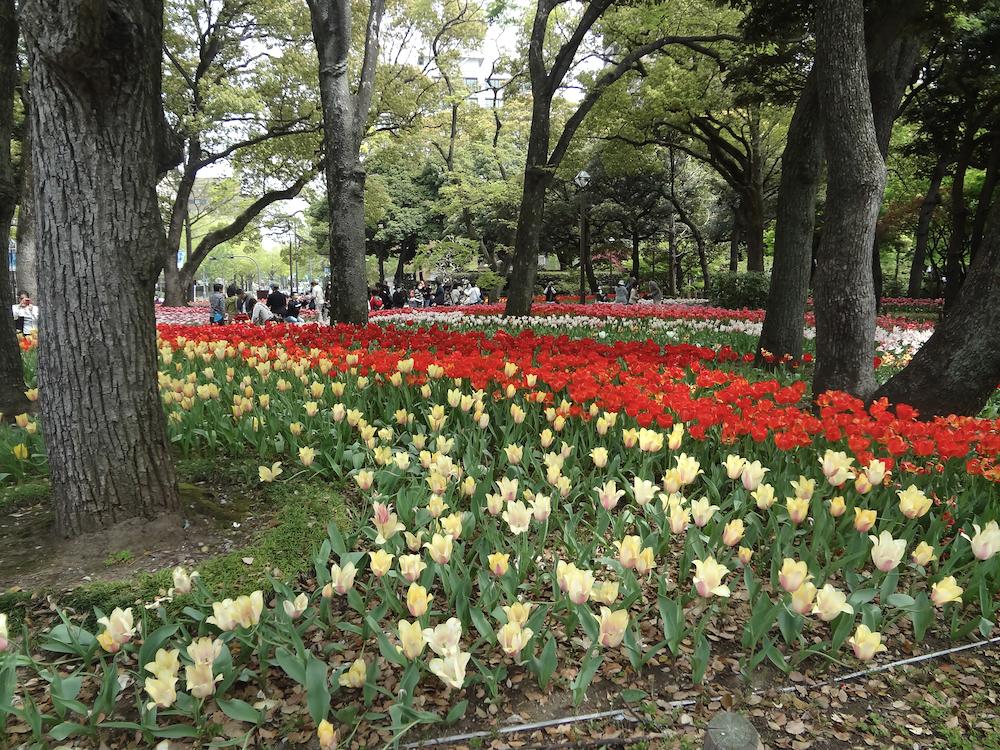 横浜公園6