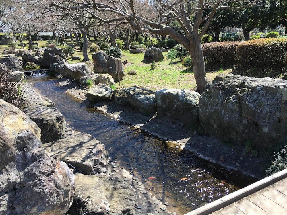 袖ヶ浦公園15