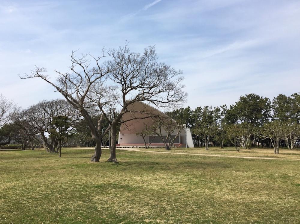 千葉県立富津公園4