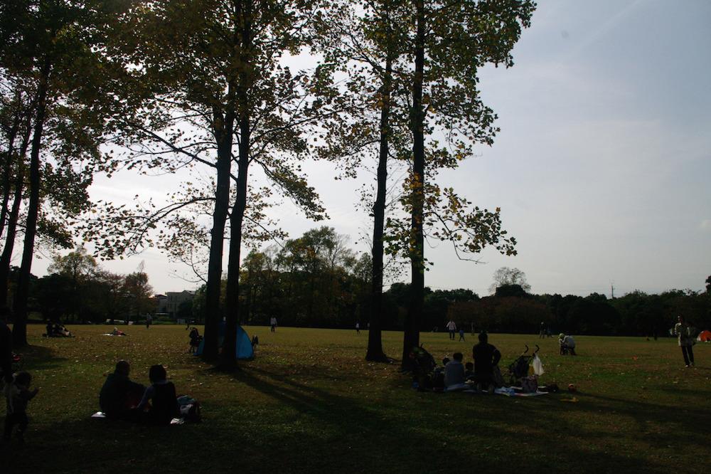 岸根公園7