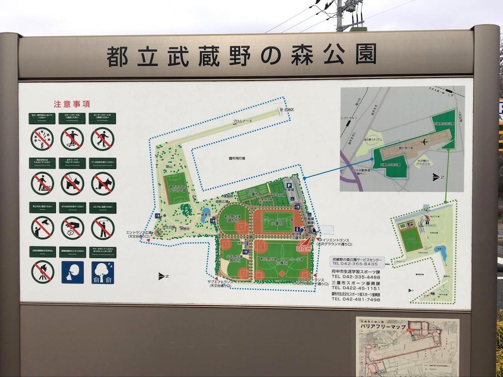 武蔵野の森公園1