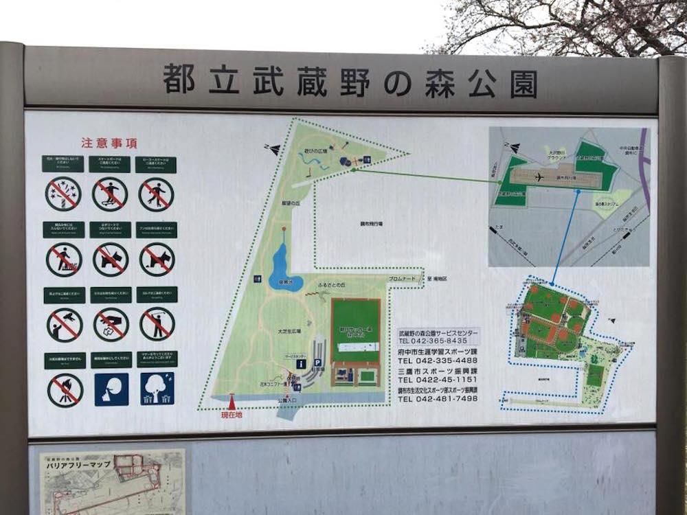 武蔵野の森公園7
