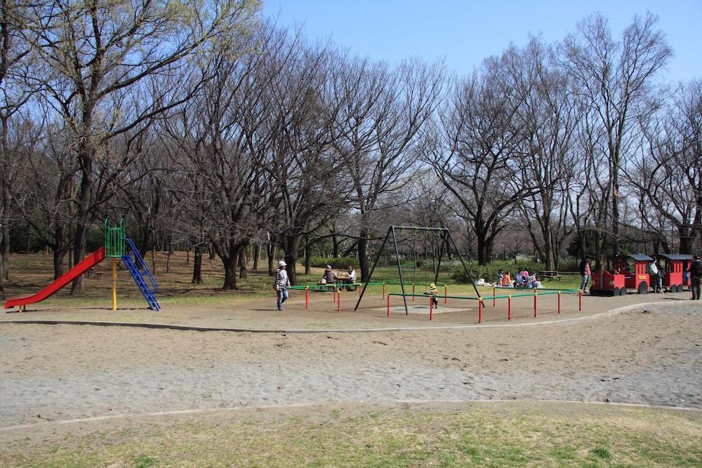 大泉中央公園5