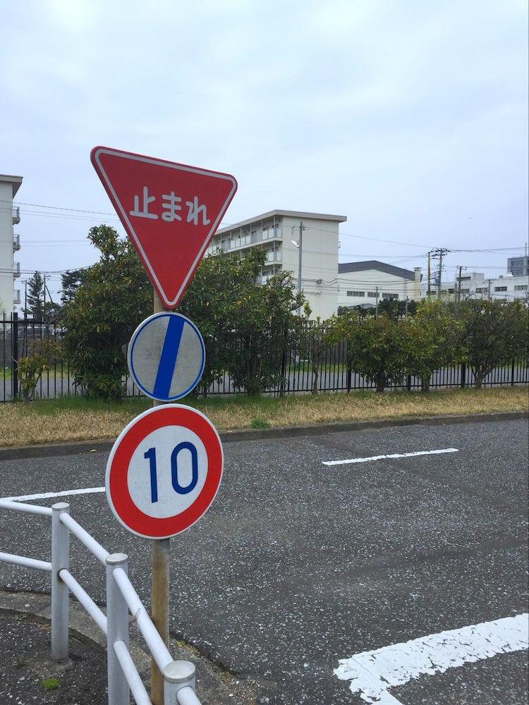 吾妻公園10