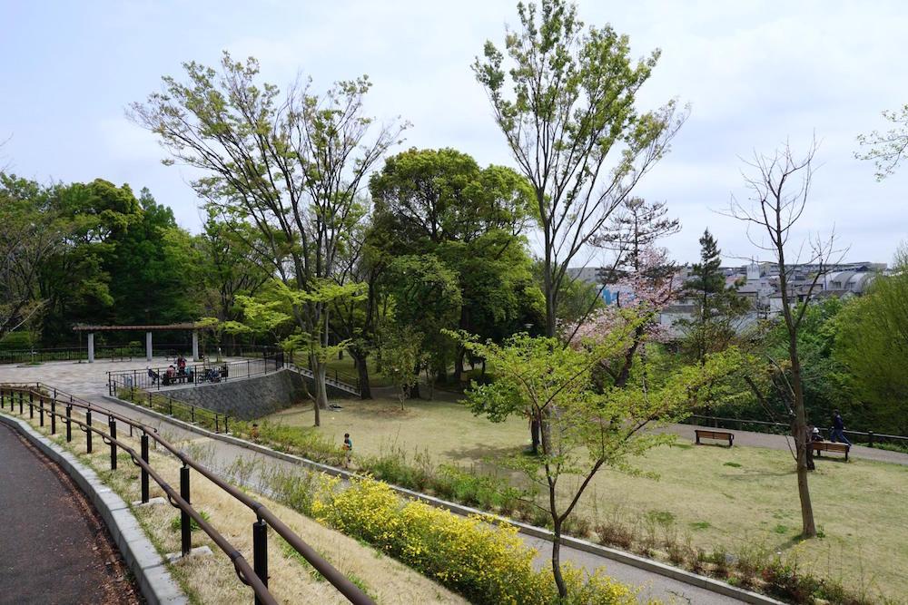 保土ヶ谷公園11
